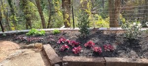 plant installation in knoxville