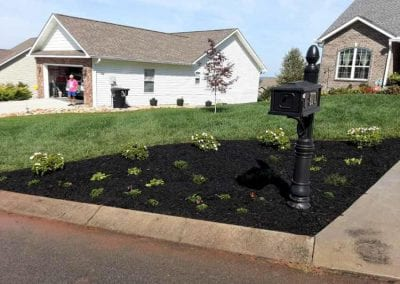 mailbox with mulch and plant installation